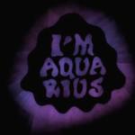 Metronomy- I'm Aquarius
